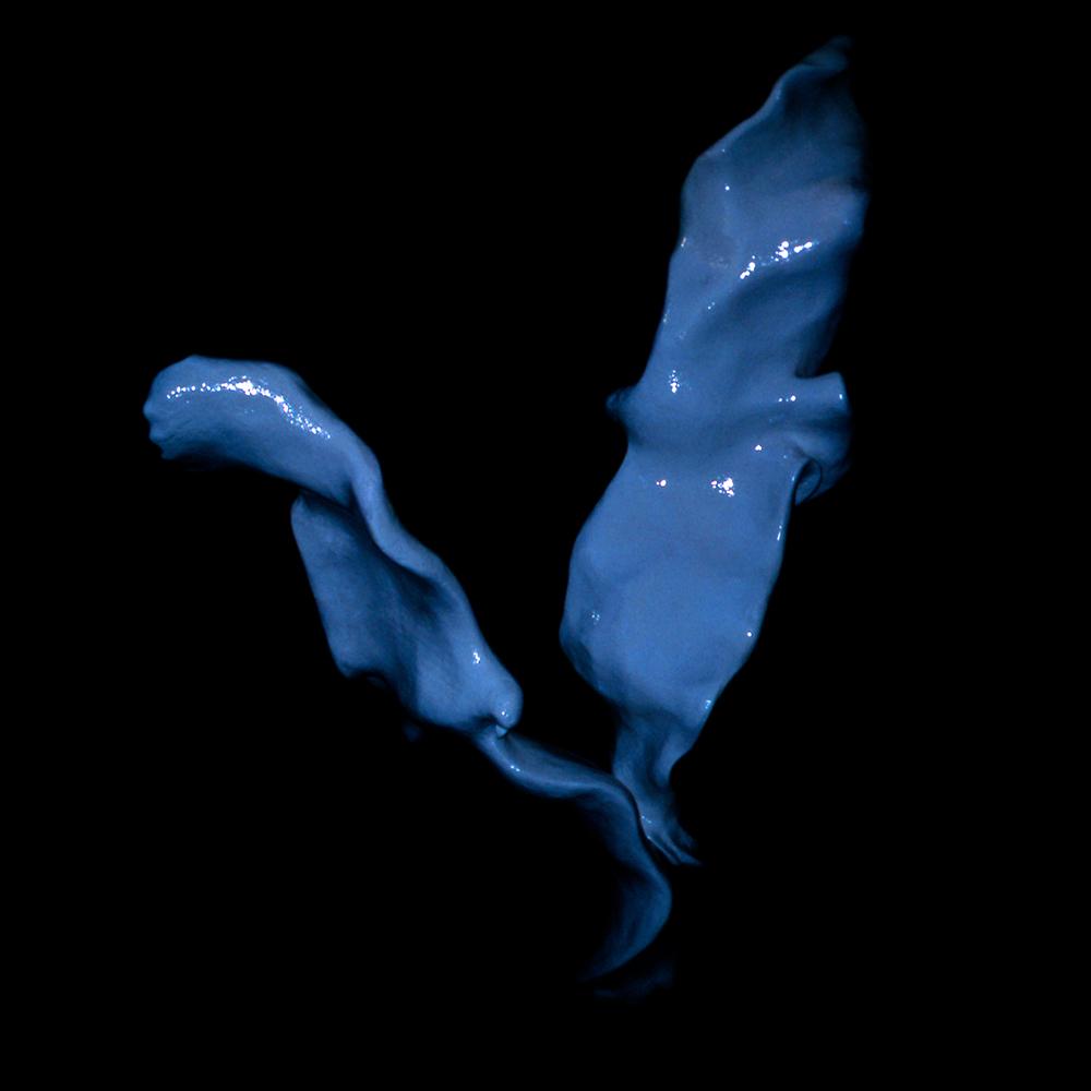 Vol Bleu